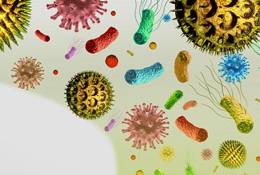 ウイルスとバクテリアを99.9%以上除去